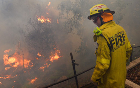 Fire Down Under: Australia's Wildfire Crisis