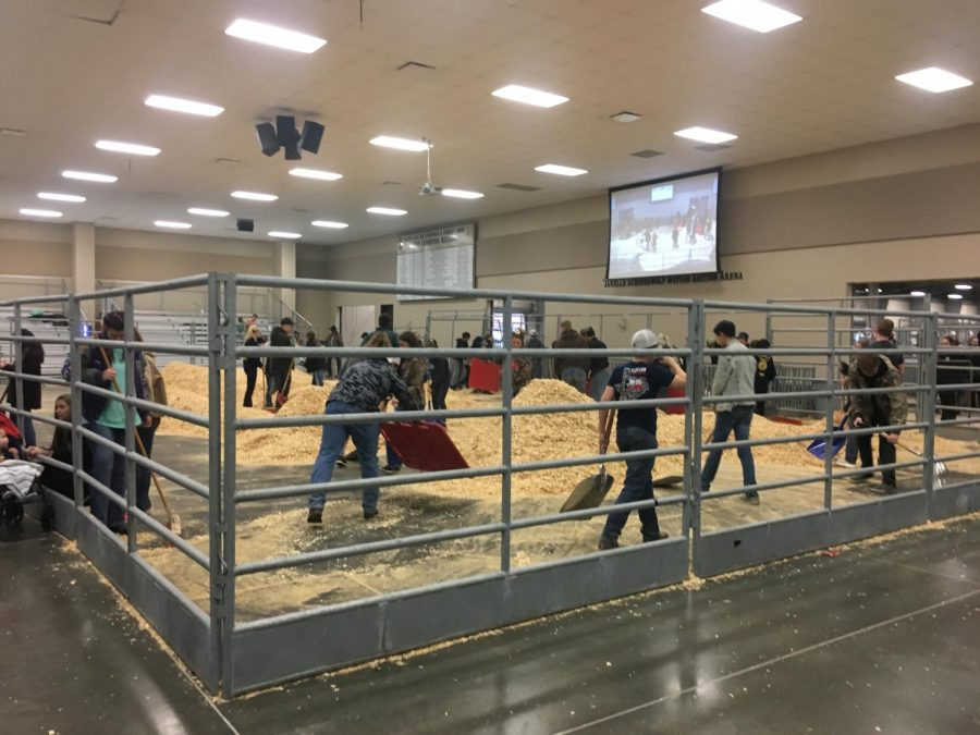 Klein ISD FFA members sweep the arena at the Klein Multipurpose Center to get ready for the live auction on Feb. 9.