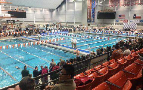 Swim, Dive Panthers Represents Oak At State