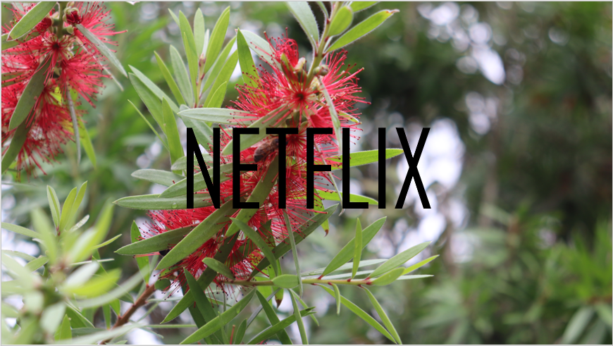 April+Netflix+Update